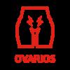 sintomas-ovarios1